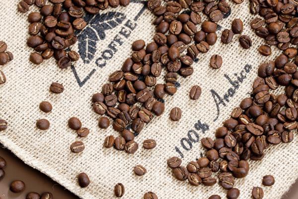 martwa natura ziaren kawy
