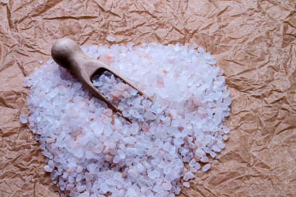 sol solic przyprawa przyprawy kuchnia kuchene