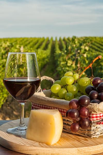 zblizenie szklo czerwone wino przed winnica