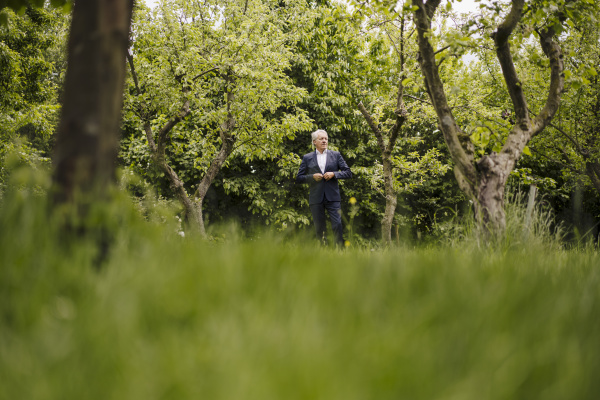 senior, businessman, in, a, rural, garden - 28748571