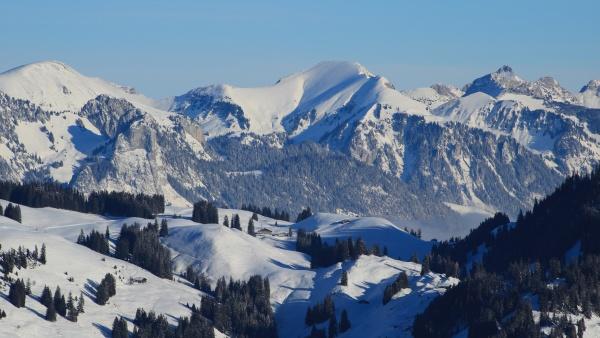 zimowy, krajobraz, widziany, z, horneggli, w - 29673542
