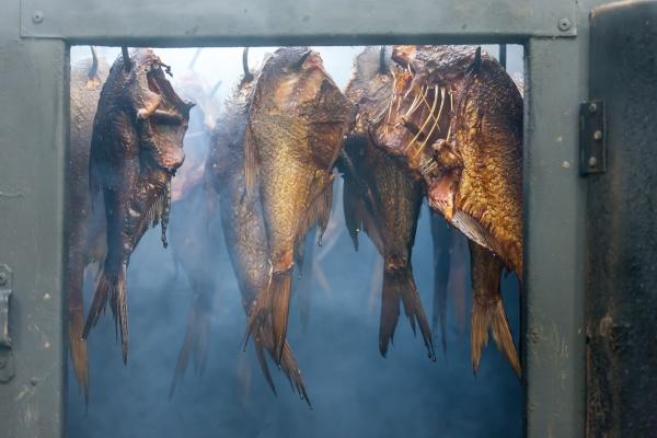 martwa natura wedzonych ryb