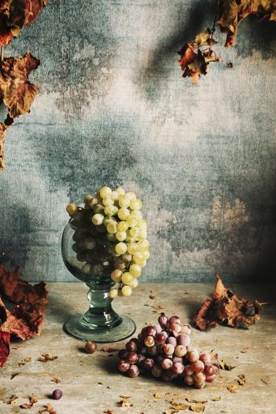martwa natura z winogron i jesiennych