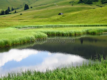 migracja wedrowac sitowie szwajcaria reflection wykazaly