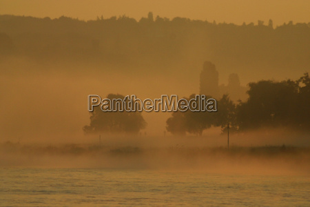 laby i poranna mgla