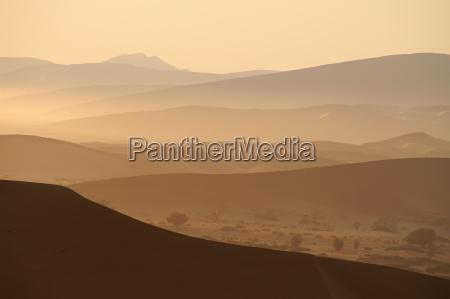 pustynny, poranek - 197542