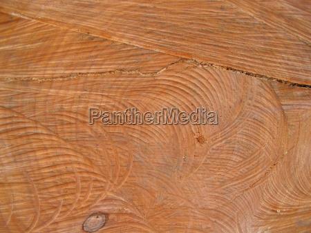 drewno drewna trunk pierscienie roku wylesianie