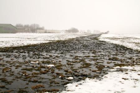 przyroda srodowisko zima zimowy zimno chlod