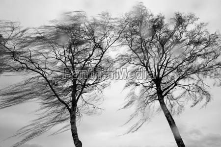 wiatr i deszcz