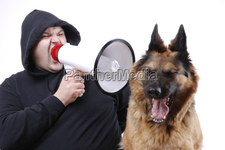 zwierze domowe pies glosno owczarek zlosc
