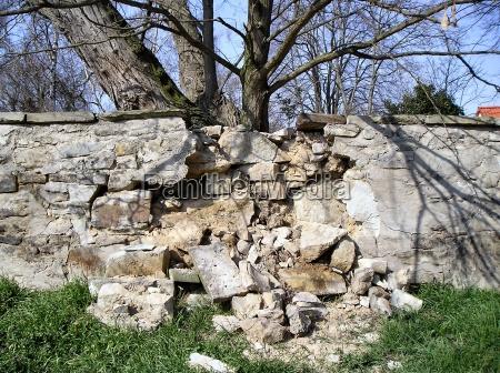 drzewo silny mur korzen korzenie gruzy