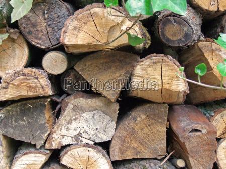 drzewo ogrod ogrodek drewno drewna paliwo
