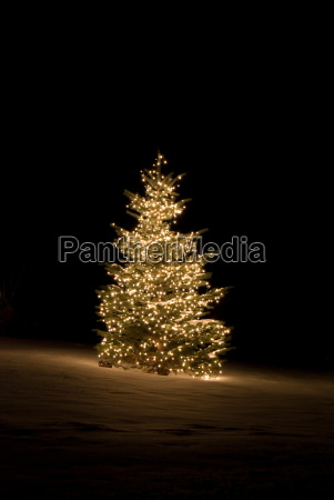 drzewo zima zimowy swiatla odkryty weihnachtszeit