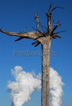 niebieski przyroda srodowisko oblok chmura chmurka