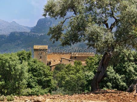 mallorca majorka hiszpania dom wiejski wiejski