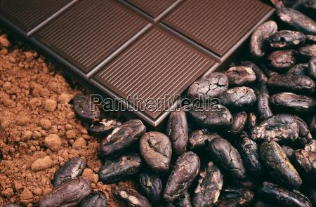 bar czekolady ziarna kakaowe proszek kakaowy