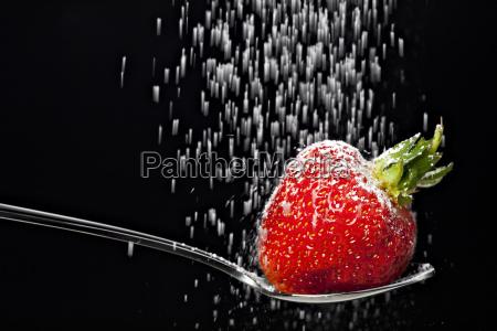 cukru pudru wchodzacych na truskawki