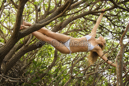 woman hanging from tree