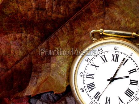 lisc zegarek pora czas jesienny jesienne