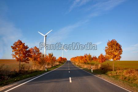drzewo drzewa windraeder wiatrak droga jezdnia