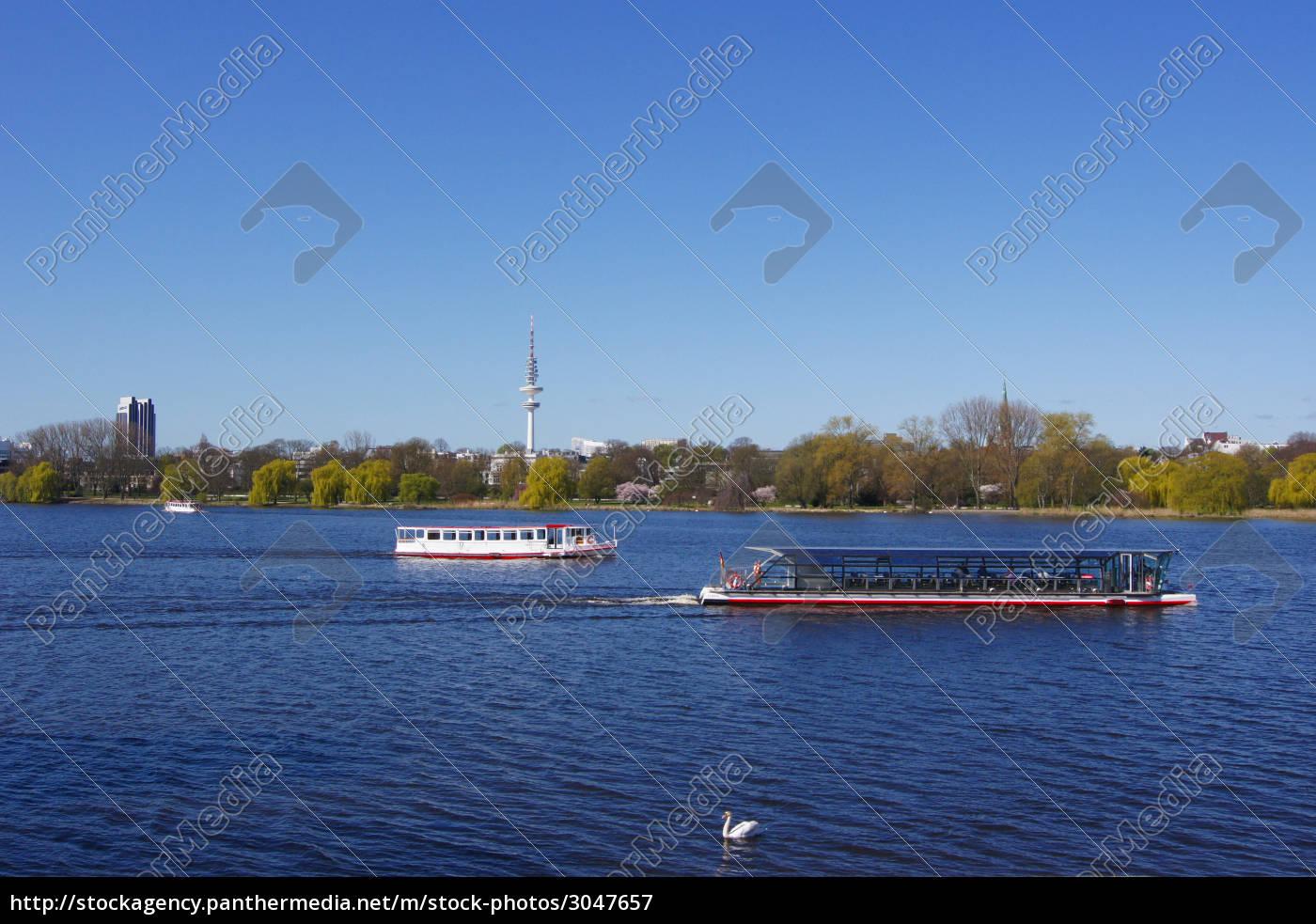 alster, wysyłka, z, łabędziem - 3047657