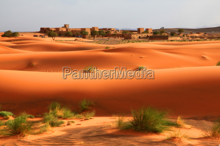 pustynia wydma maroko piaski piaskowa piasek