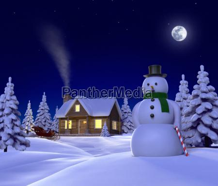 a christmas themed snow cene