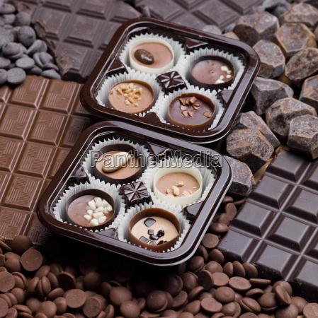 czekolada martwa zywotnosc
