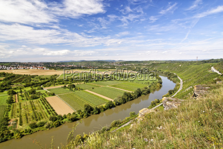 weinanbau winnica dolina rebstock winorosl winogron
