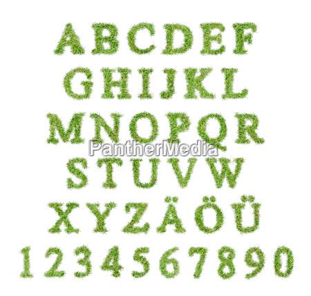 alfabet liter w ksztalcie trawnika