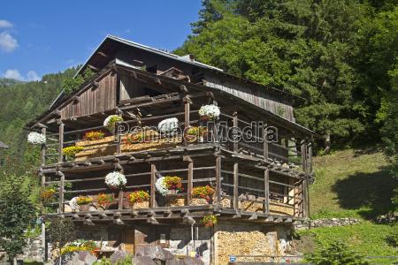 gory blumenschmuck ozdoby kwiatowe gospodarstw ferma