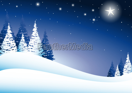 zima zimowy noc nocy lod choinka