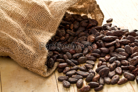 surowy saat kakao skladnik vinicius fasola