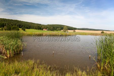 wody lato letni turyngia suesswasser staw