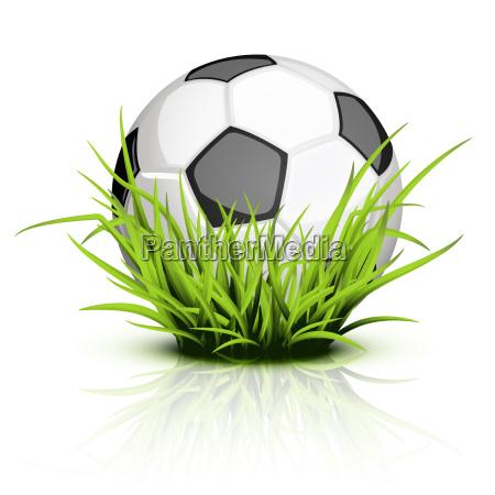 soccer ball on reflecting grass