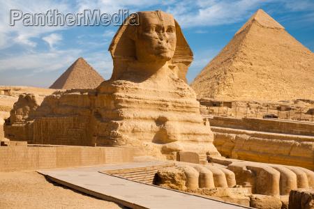 full sphynx profil piramida giza egipt