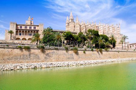 majorca la seu cathedral and almudaina