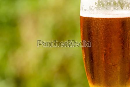 zimna szklanka piwa z pianka