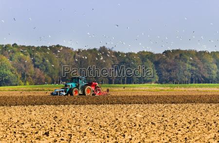 gospodarstwo rolnictwo architektura pole goto zniwa