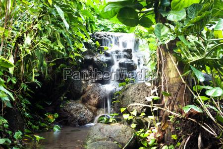 wodospad w lesie deszczowym