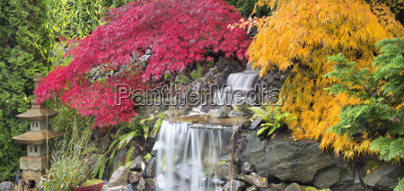 waterfall with colorful maple trees in