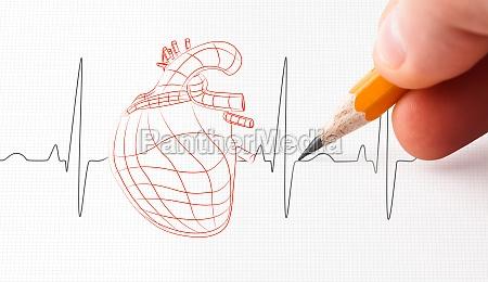 szkic linii tetna i serca narysowany