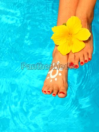 piekne nogi kobiet w basenie