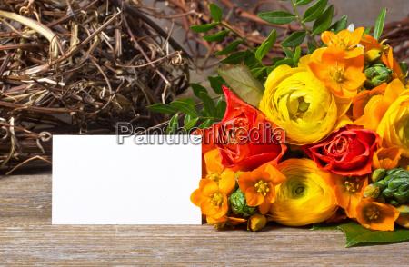 kwiat kwiatek kwiaty kwiatki zawod roslina