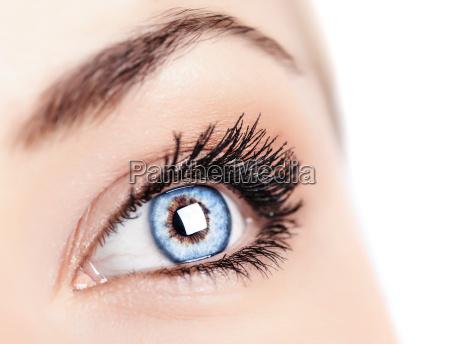 kobieta niebieskie oczy