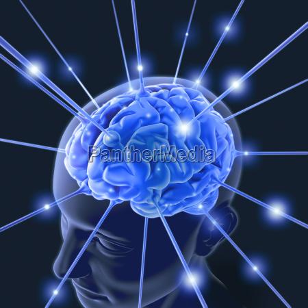 puls energii mozgu