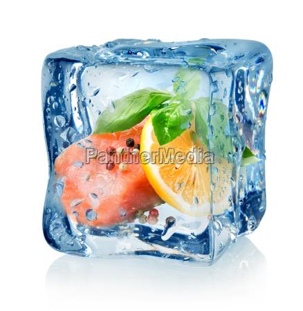 filet z lososia w kostke lodu