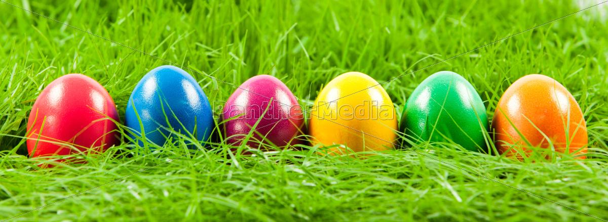 wielkanocni, jajka, w, świeżej, zielonej, trawie. - 10045386