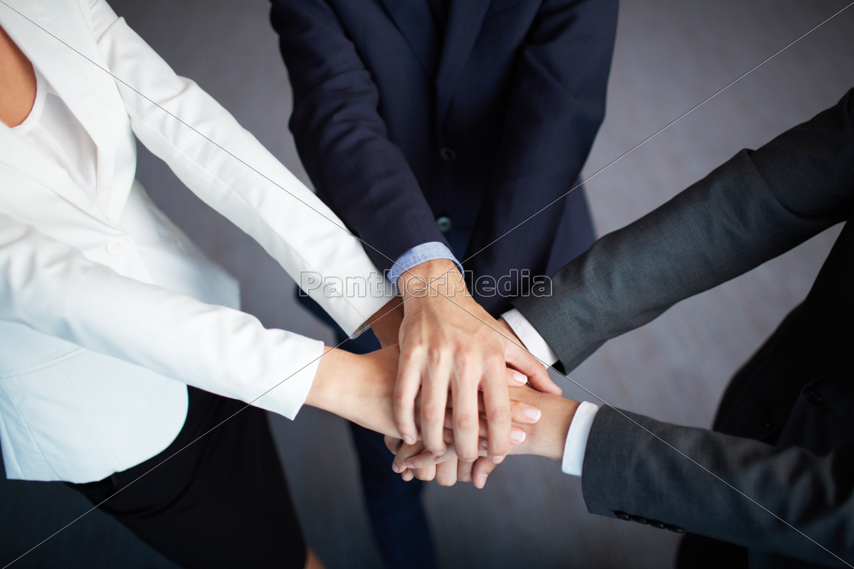 jedność, biznesu - 10081548