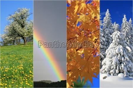 zima zimowy lato letni cztery wiosna